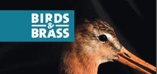 Birdsnbrass | ROHEL Leeuwarden