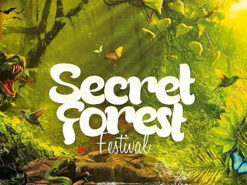Secret Forest Festival x BoostBussen.nl (Partybus Ticket / Groningen)  | MGTickets