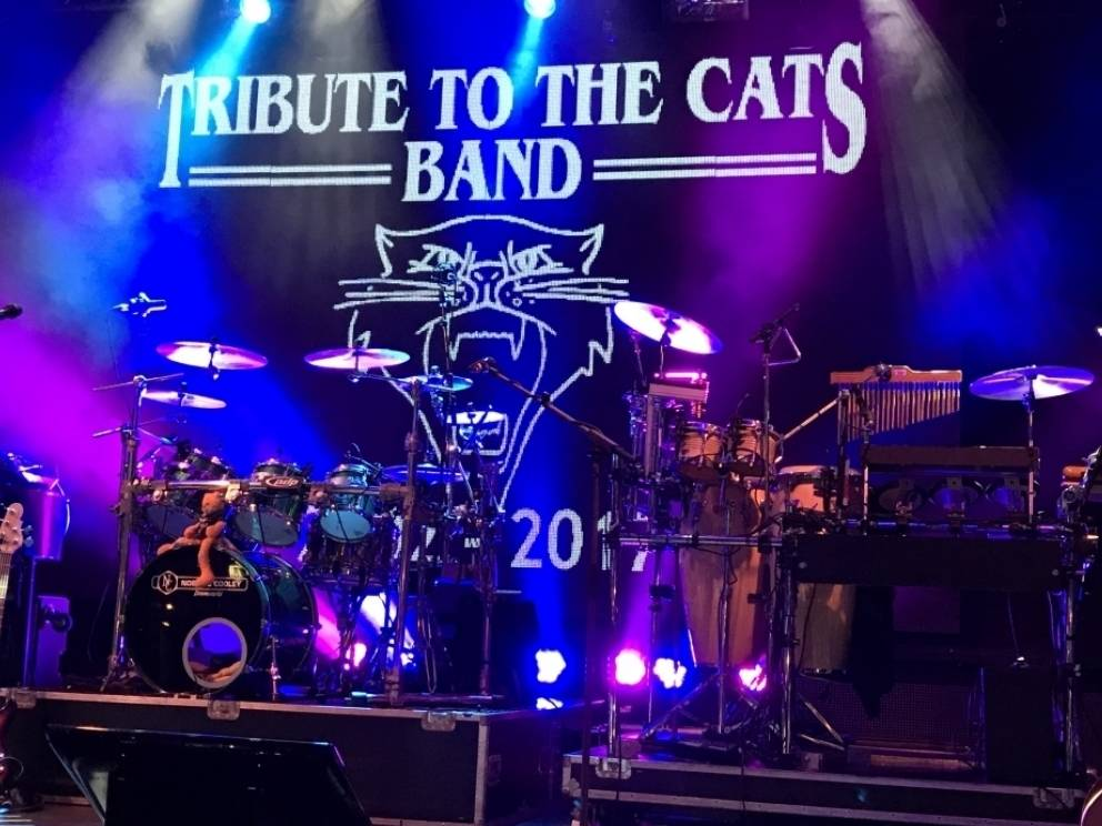Tribute to the Cats band Achterveld 2019