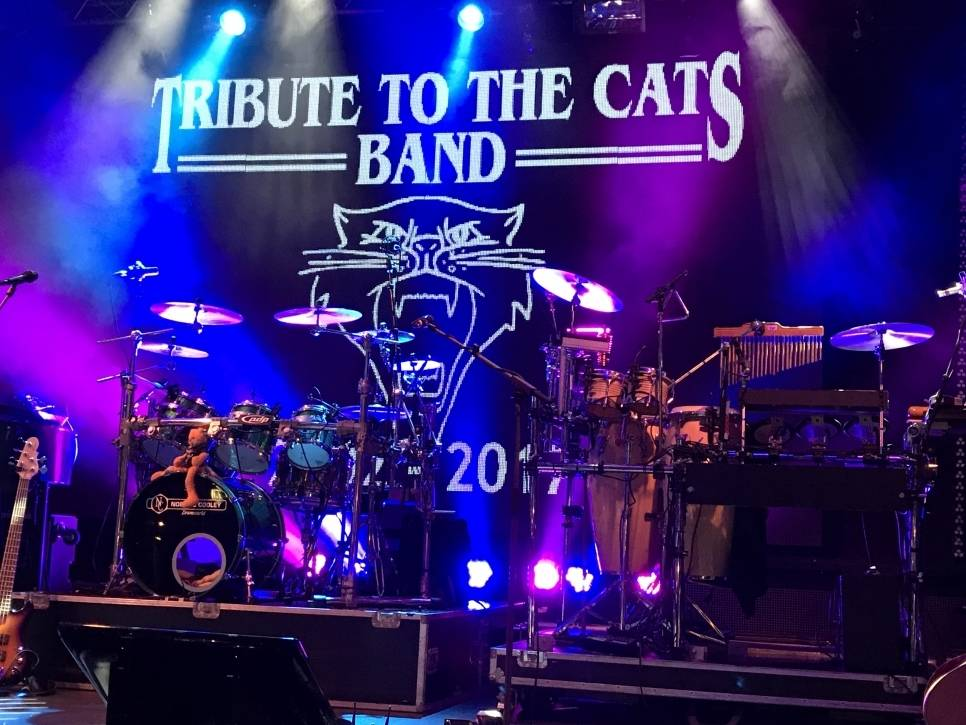 Tribute to the Cats band De Rips 2019