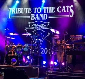 Tribute to the Cats band | MGTickets